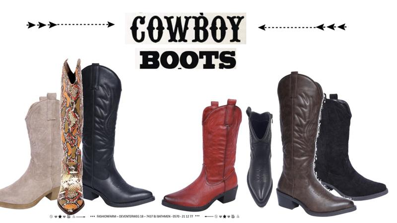 *** COWBOY BOOTS ! ***